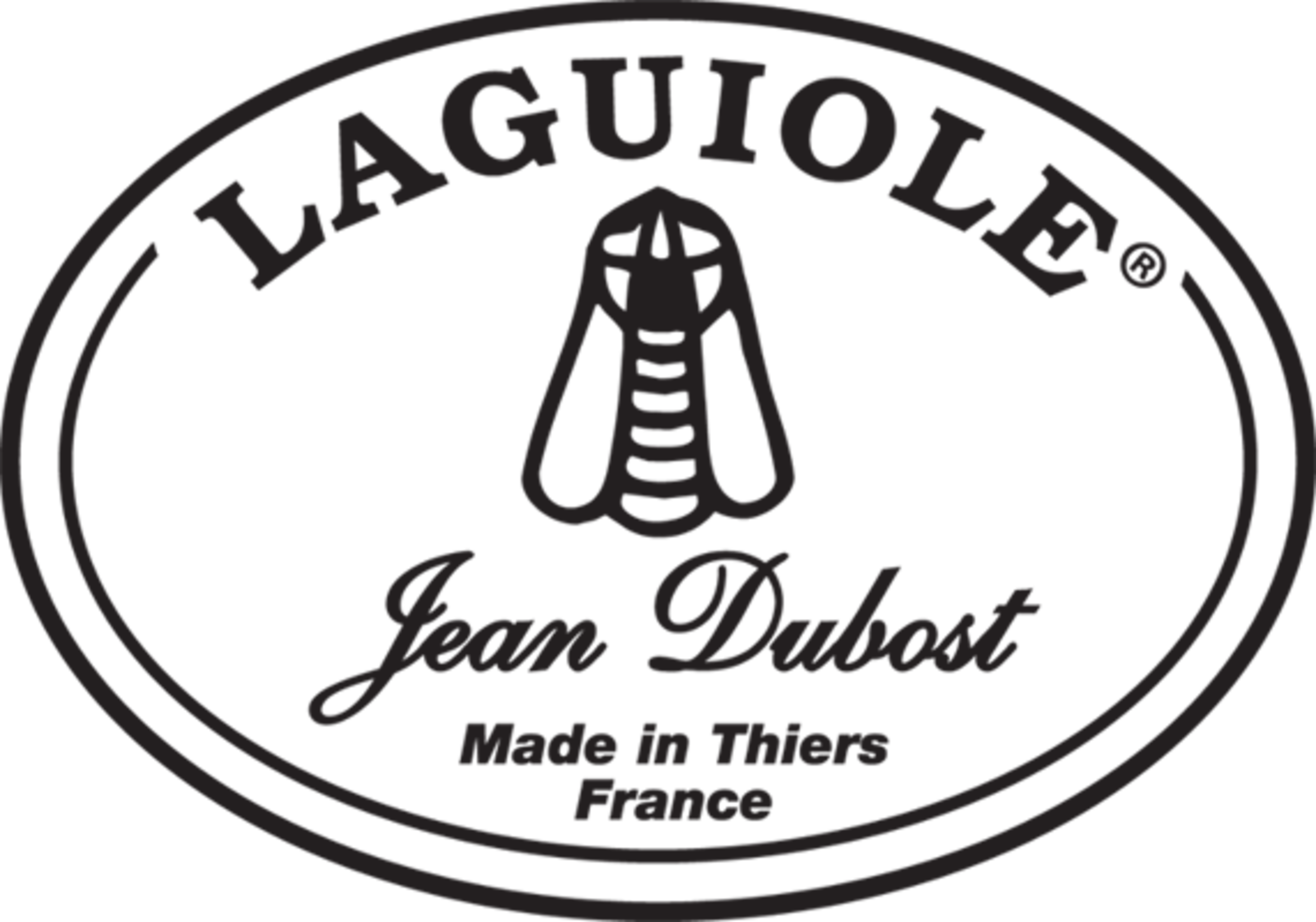 Couteau Laguiole® Jean Dubost, gamme New Age - Manalogue Darty Cuisine